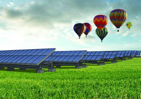 Largest Agri-Solar display in MA celebrated!